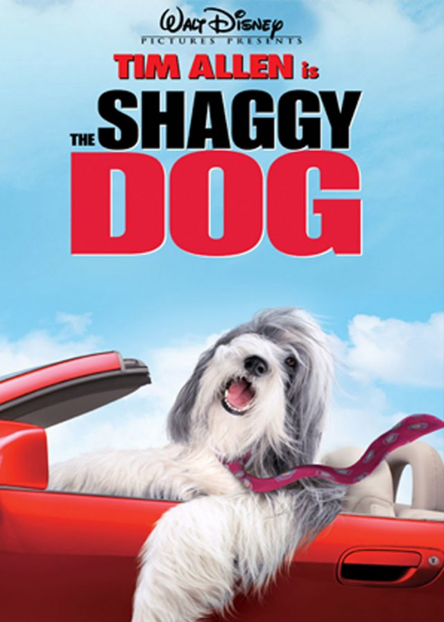 http://sarah-julia.nl/wordpress/wp-content/uploads/2019/01/Shaggy-dog-1-640x897.jpg